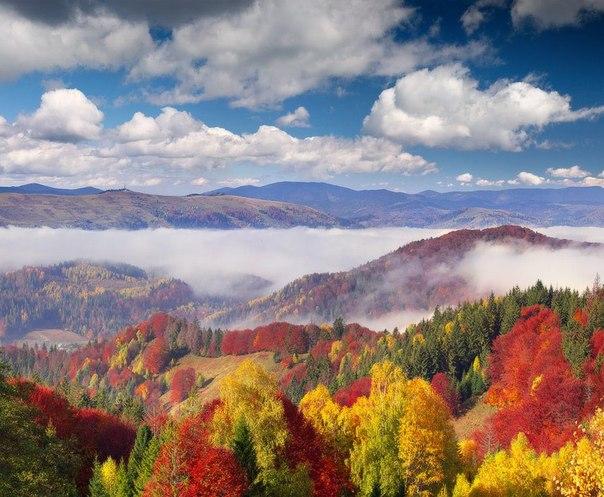Отдых в Карпатах осенью